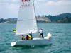 rlir2012-039
